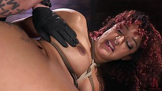Liv Revamped: Gangbang Confessional - HogTied